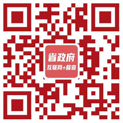 省政府互联网+督查.jpg