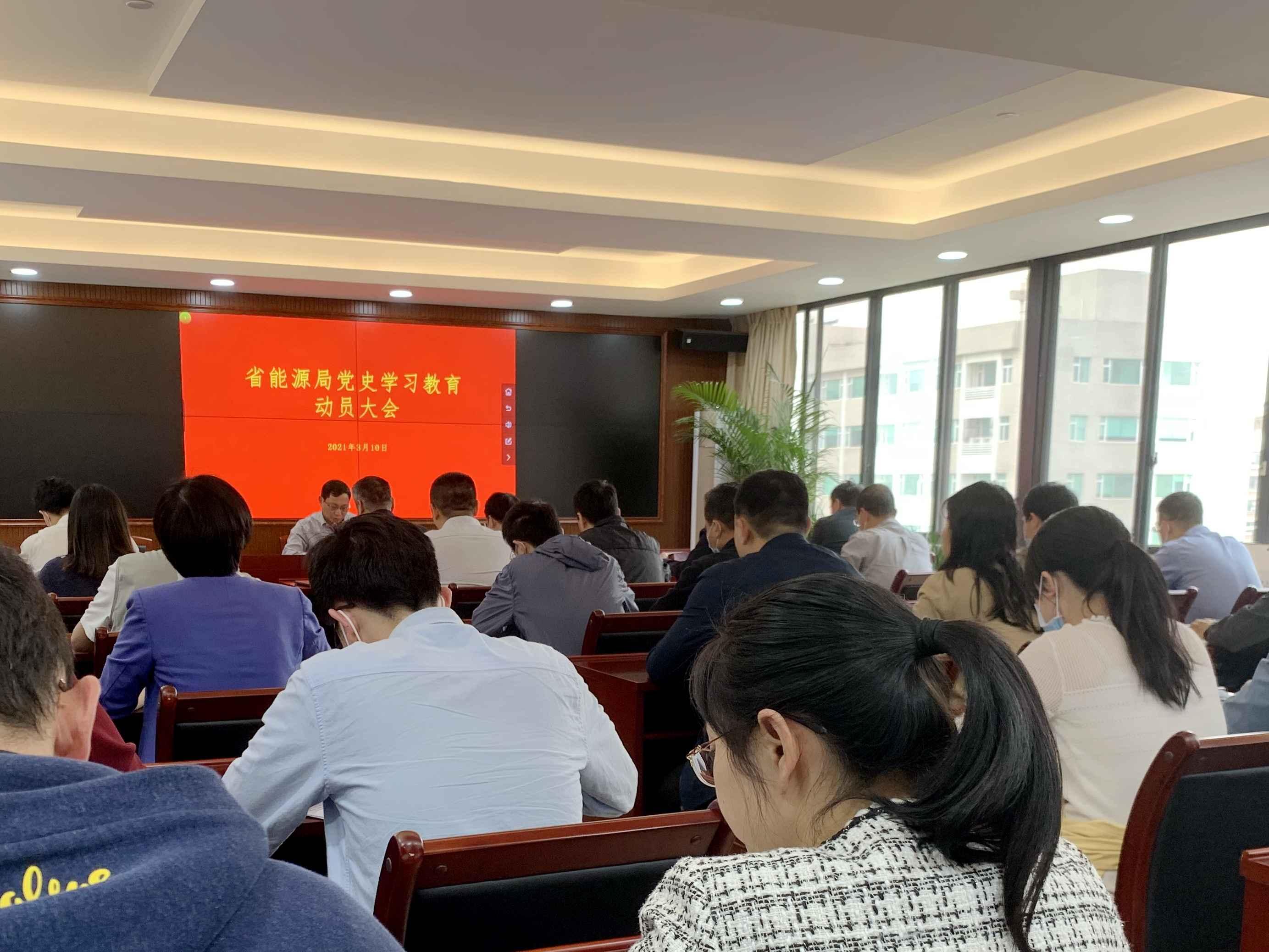 省能源局召开党史学习教育动员会议